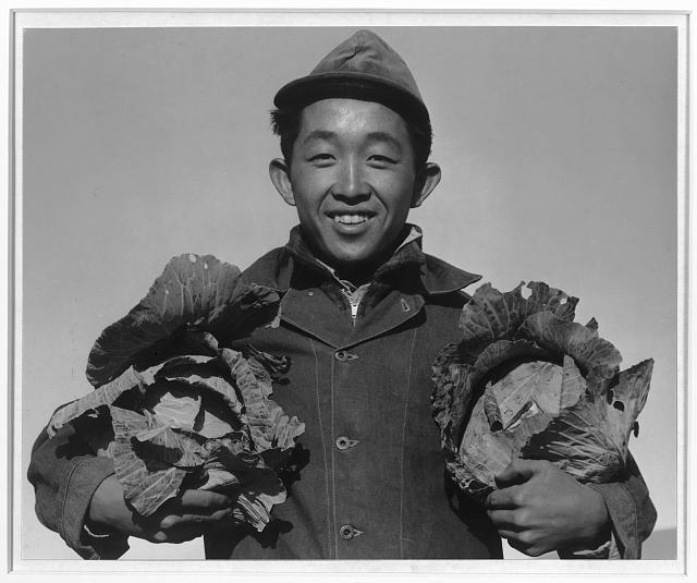 Richard Kobayashi, farmer with cabbages, Manzanar Relocation Center, California / photograph by Ansel Adams